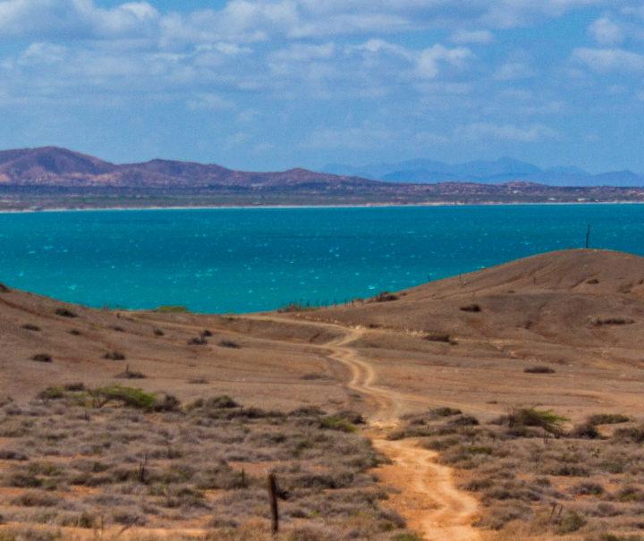 Portada Punta Gallina